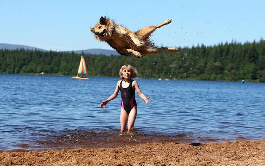 Blitzen umí vyskočit až do výšky dvou metrů.
