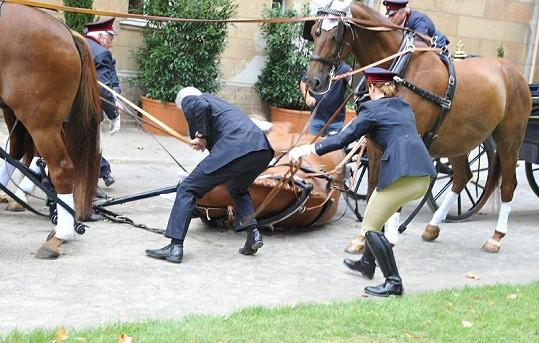 Krátce před odjezdem kočáru jeden kůň upadl.