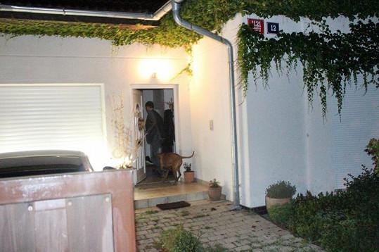 Domenica ve dveřích vítal jenom pes.
