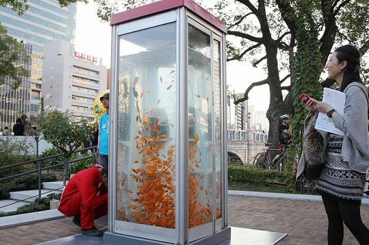 Nevšední telefonní budka se nachází v Japonsku.