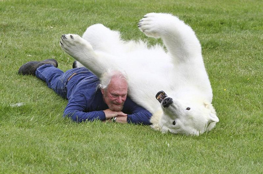 Medvědice se svým chovatelem ráda dovádí.