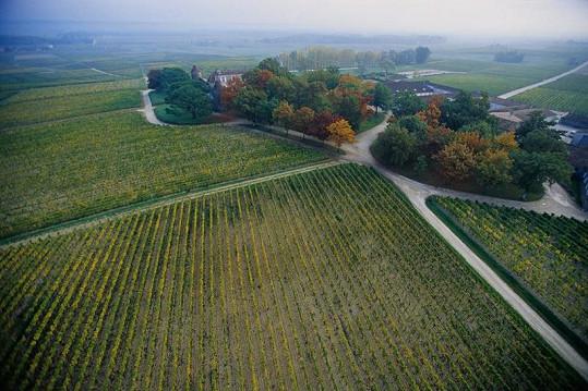 Takto vypadají vinice Chateau d'Yquem dnes.