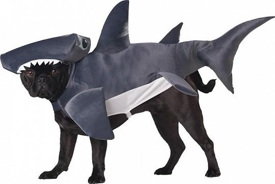 Kostým žraloka.