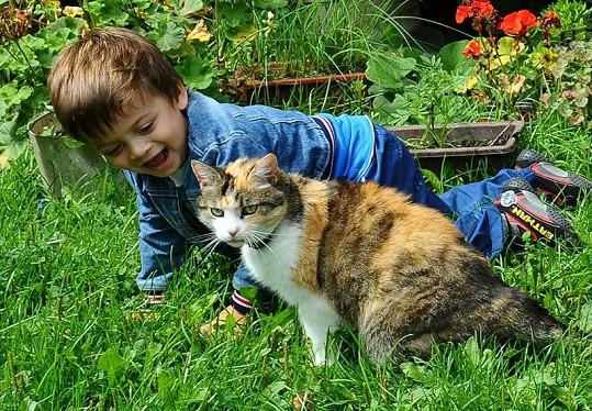 Syn Evy Decastelo Michael si hraje s kočičkou.
