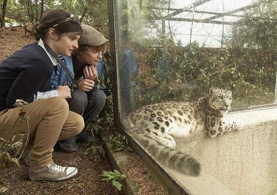 Kristýna Podzimková a Petr Buchta obdivovali jaguáří mámu.