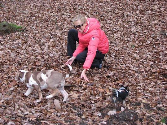 Hanka dovádí v parku se svým louisianským leopardem a čivavou.