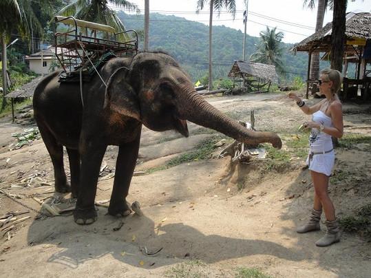 Michaela Ochotská na sloní farmě.
