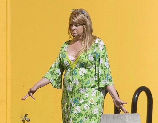Kirstie Alleyová dlouhodobě bojuje s váhou.
