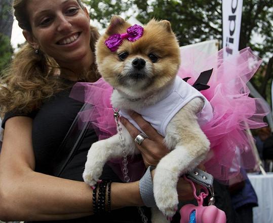 Růžová barva na festivalu vítězila.