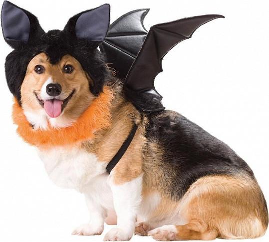 Kostým netopýra.