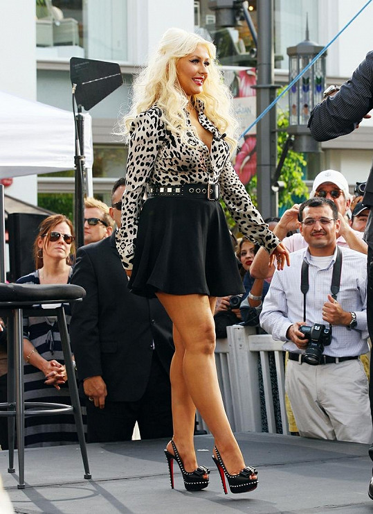 Aguilera se nebojí vyzývavých modelů.