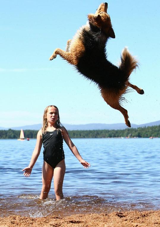 Psík ve vzduchu ještě udělá salto.