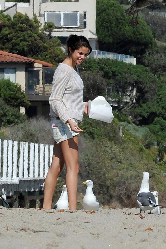 Selena Gomez na pláži krmila racky.
