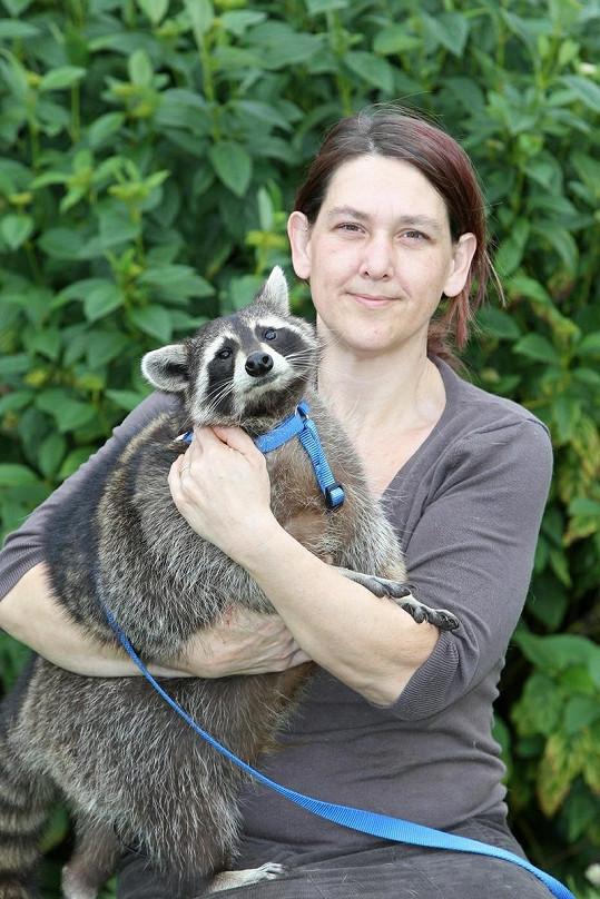 Michelle Rhodesová s jedním z mývalů.