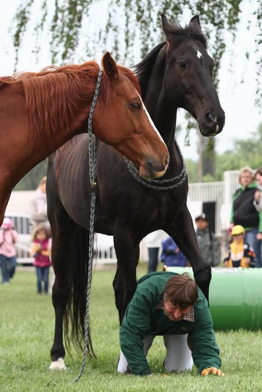 Václav Vydra patří mezi největší milovníky koní.
