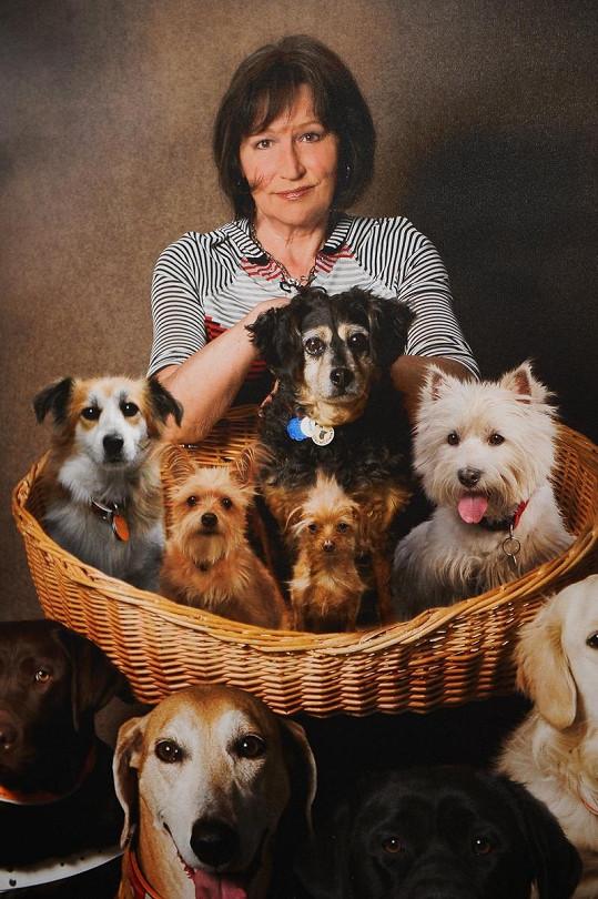 Marta Kubišová je milovnicí psů.