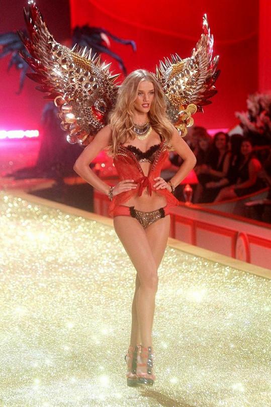 Modelka je jedním ze sexy andílků firmy Victoria's Secret.
