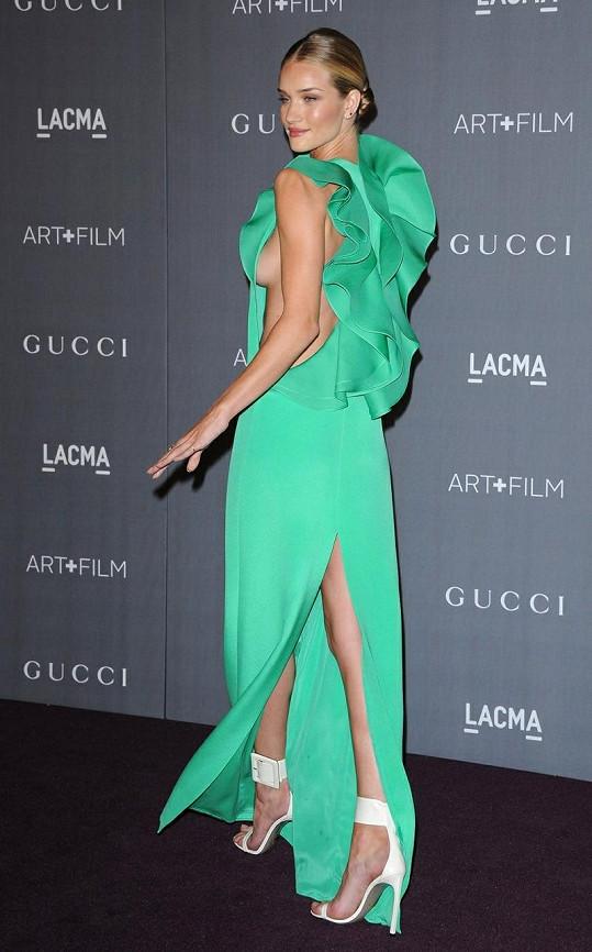 Huntington-Whiteley na galavečeru LACMA Art + Film v Los Angeles.