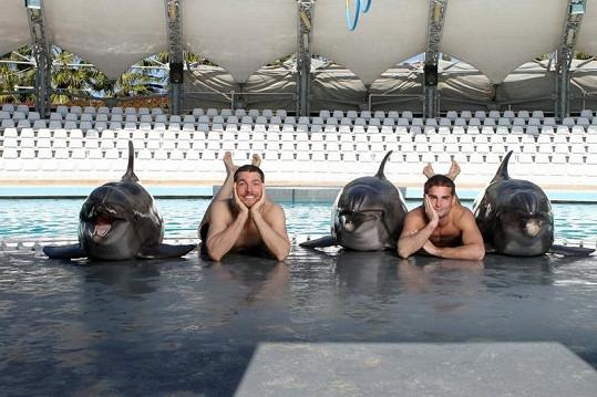 DaeMen se váleli s delfíny.