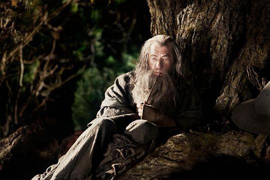 Gandalf na cestě na Osamělou horu.