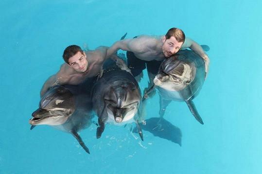 DaeMen s delfíny v bazénu.