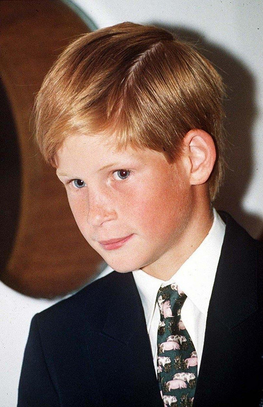 Harry v roce 1995