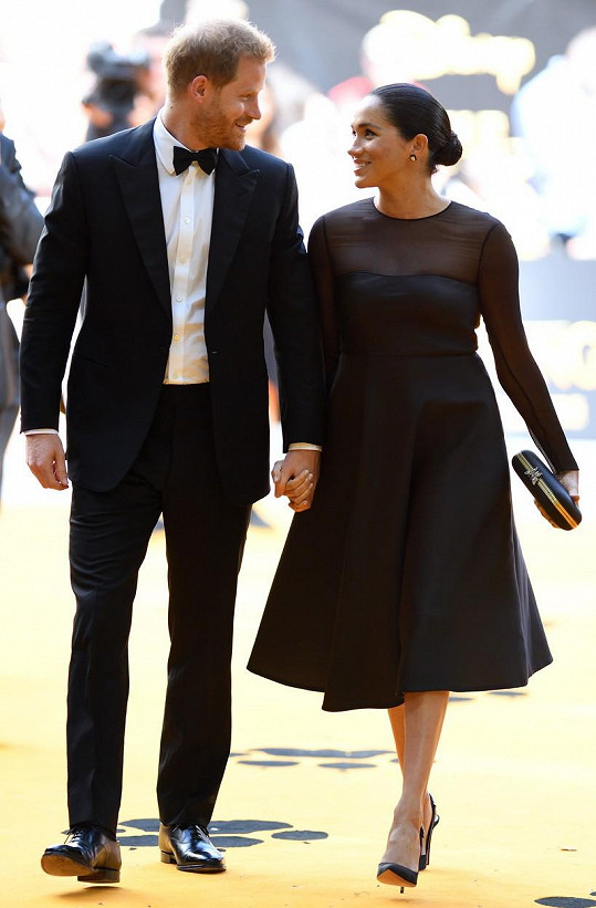 S manželkou Meghan v posledních dnech čelili kritice kvůli soukromým letům.