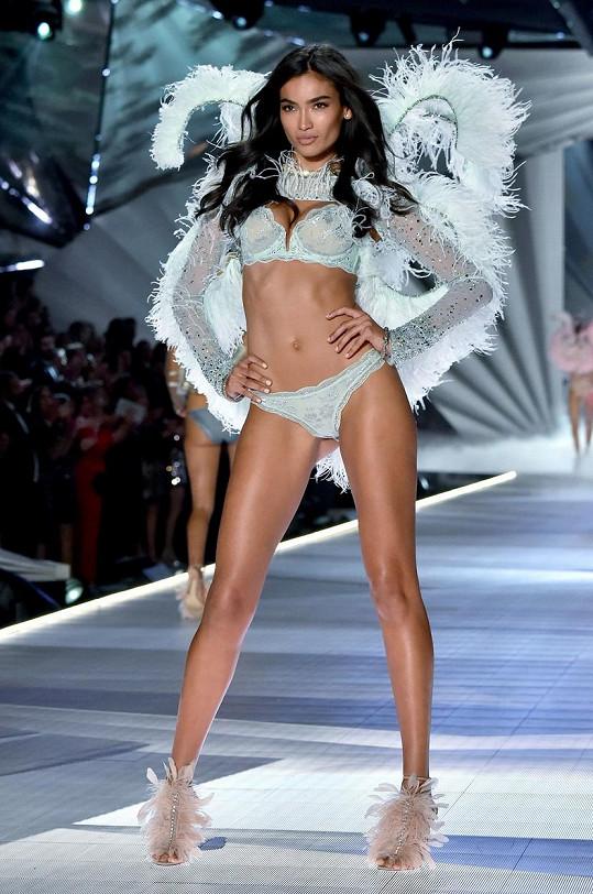 Kelly Gale chodí přehlídky Victoria's Secret od roku 2013.