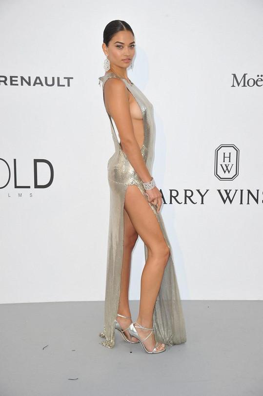 Modelka, jež patří pod křídla Victoria´s Secret, si na odvážnou módu potrpí...