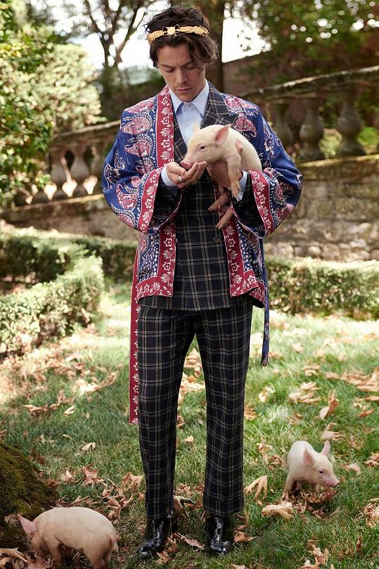 Harry je tváří značky Gucci a lehce zženštilý styl k němu už jednoznačně patří.
