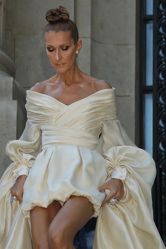 Celine Dion v krátkých šatech odhalila kalhotky.