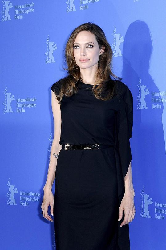 Angelina Jolie (tentokrát je to ona) asi netuší, že má ve Wisconsinu dvojnici.
