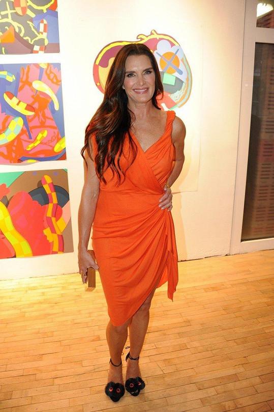 Brooke Shields na akci Tribeca Ball newyorské akademie umění.