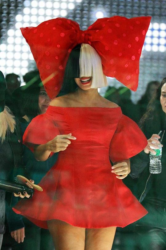 Pro zpěvačku jsou typické paruky, které jí kryjí tvář.