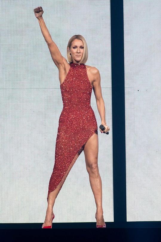 Céline Dion vyrazila na světové turné.