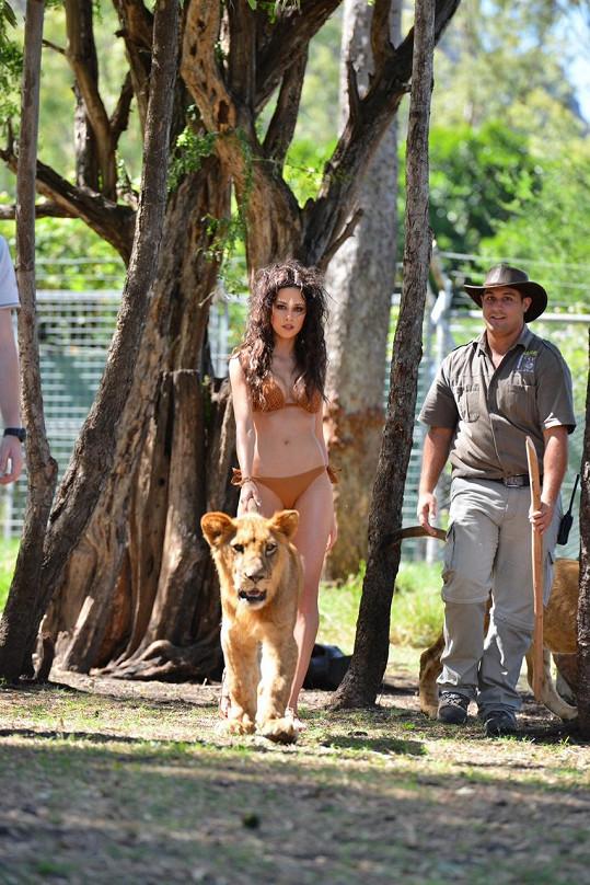 Focení se lvy zvládla Kateřina bez úhony.