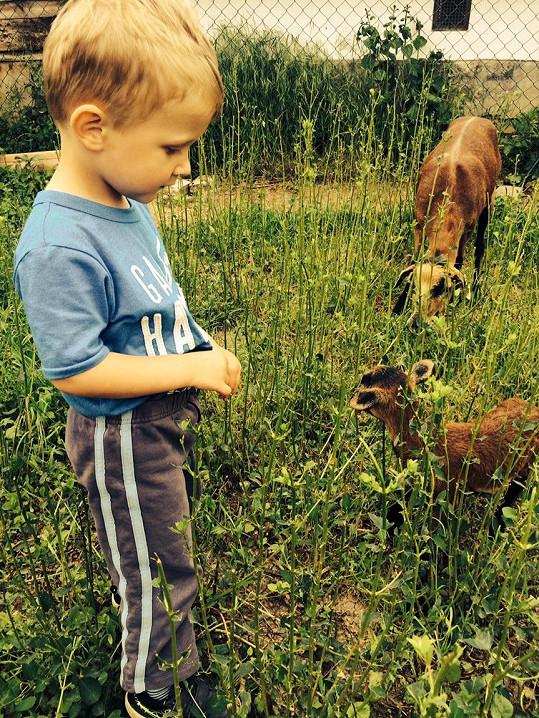 Kryšpín má rád zvířata a chtěl by psa. Vystačí si ale i s kozou.