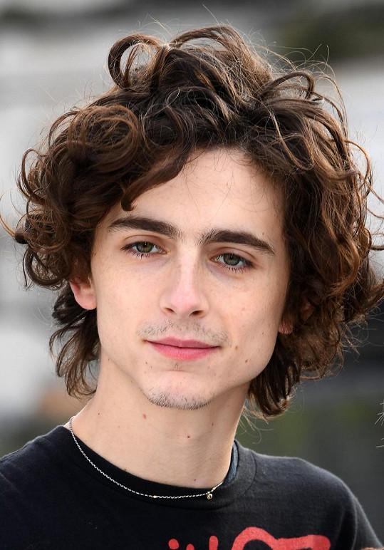 Timothée Chalamet by si měl zahrát mladého Boba Dylana.