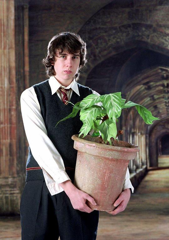Lewis jako bradavický učeň s talentem pro bylinkářství Neville Longbottom