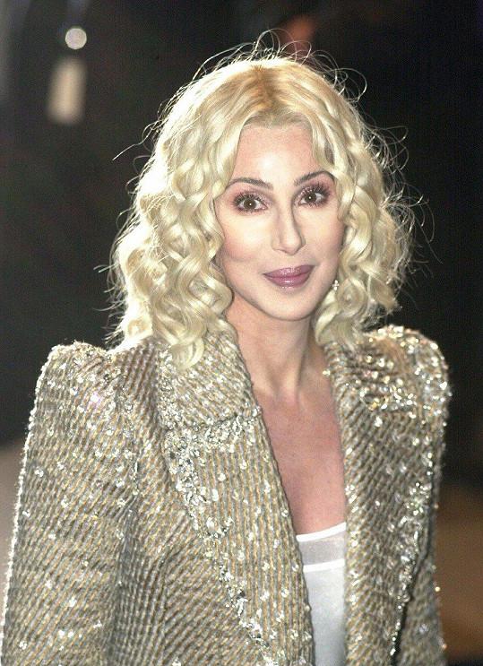 Cher v roce 2013.