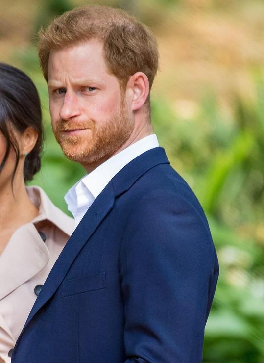 Myslí si, že vévoda lituje nejen rozhovoru, ale i upuštění od povinností v královské rodině.