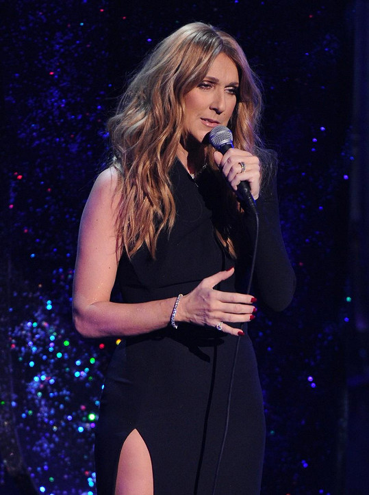 Céline Dion vystoupila na vzpomínkovém koncertě na Franka Sinatru.