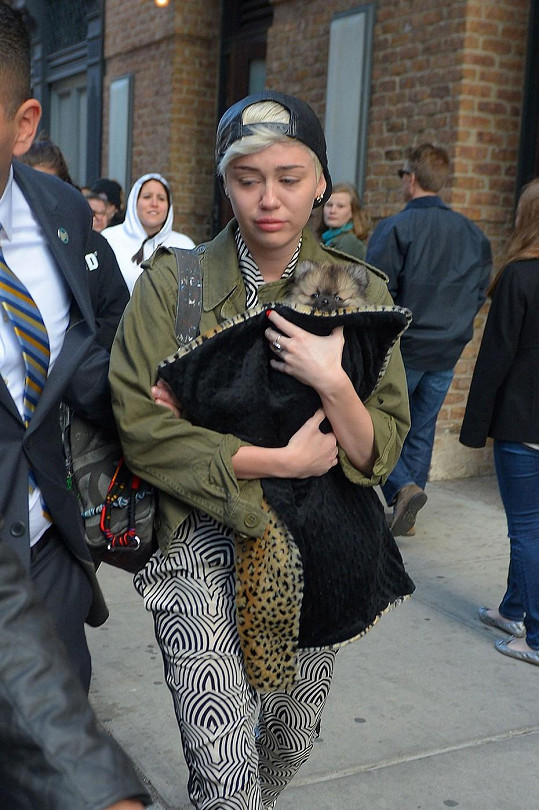 Miley zatím nedokáže mít štěně Moonie stejně ráda jako Floyda.