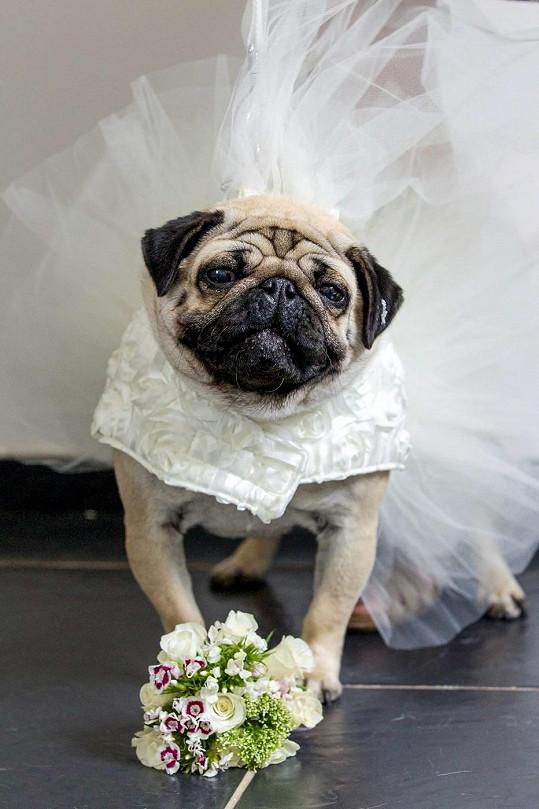 Betty byla krásnou nevěstou.