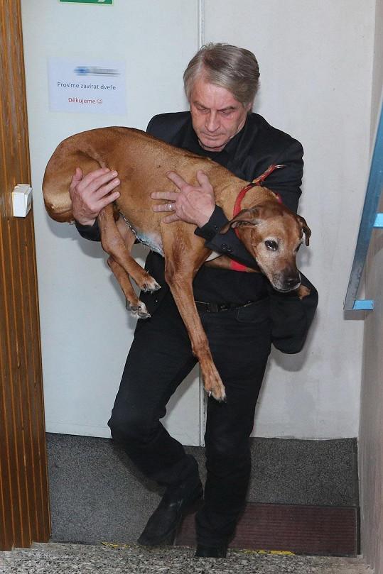 Josef Rychtář si odváží Gejšu z kliniky.