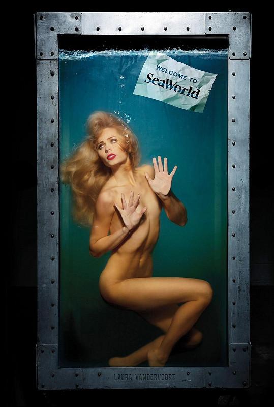 Laura Vandervoort v sexy kampani