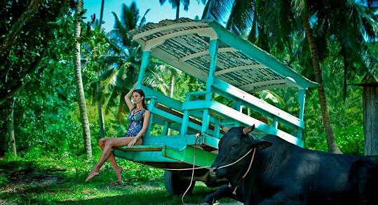 V džungli na Seychelách.