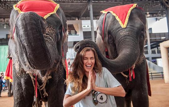 I Andrea Bezděková se nechala slony pohladit.