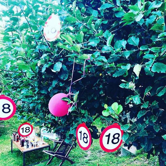 Všude byly rozvěšené balónky a značky s osmnáctkou.