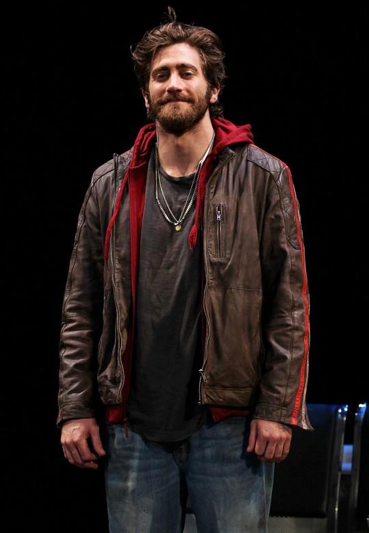 Jake Gyllenhaal má dobrý vkus na ženy.
